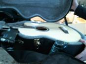 MICHAEL KELLY Bass Guitar PHOENIX PHOENIX